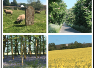 Village Views – May Featured Image