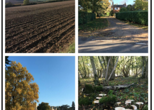 Village Views – Oct Featured Image
